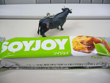 20080214soyjoy