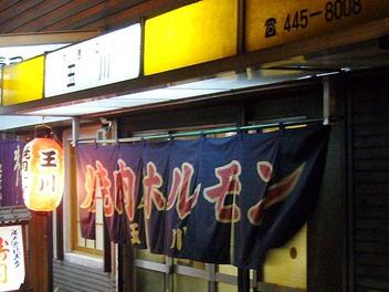 20080725tamagawa