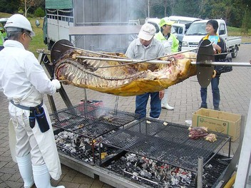20081109tajima_0923usi