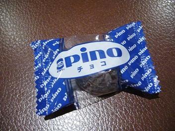 20090106possamu_pino