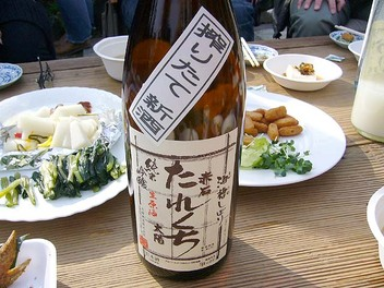20090207taiyou_tarekuti