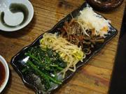 20090416manryou_namuru