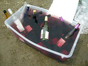 20090705yanamori_wine