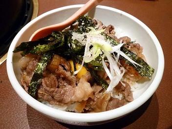20100516possamu_gyuudon