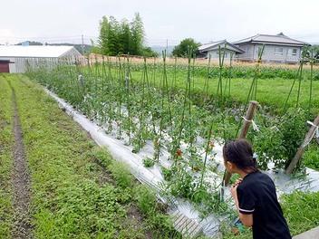 20100627yanamori_syuukakusai